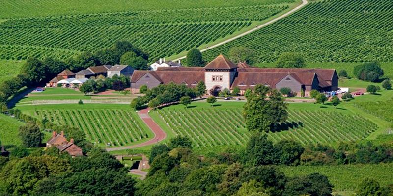 Image result for denbies wine estate