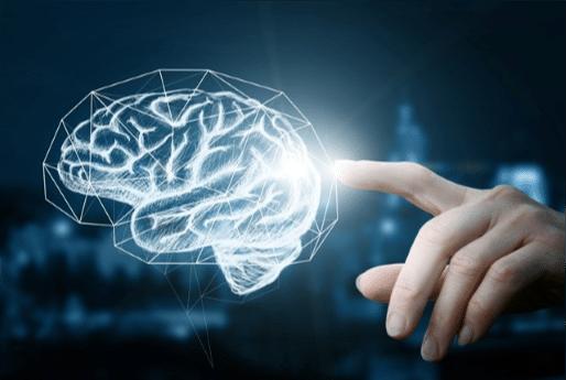 Organisational Neuroscience
